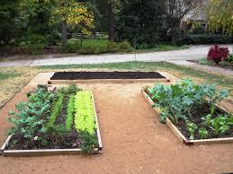Small Picture Raised Garden Designs Garden Design Ideas