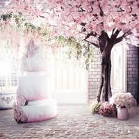 Pink Photography <b>Backdrops</b> Canada | Best Selling Pink ...