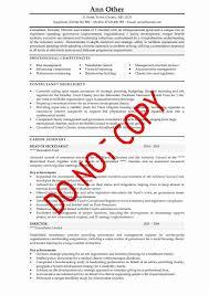 Business development manager CV template  managers resume  marketing  job  application  revenue job