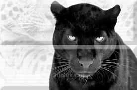 Aura Leopard Composicion Puma 30x45 <b>панно</b> от <b>Absolut</b> ...