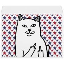 """Конверты c качественными принтами """"<b>cat</b>"""" - <b>Printio</b>"""