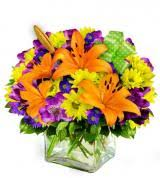 Oostburg Florist. Oostburg WI Flower Delivery. Avas Flowers Shop