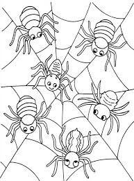 Small Picture Six Cute Spider on Spider Web Coloring Page NetArt