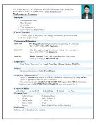 Examples Of Resumes   Cv Sample Professional Writing Service In        Domainlives