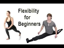 Image result for Getting Started With Flexibility and Stretching