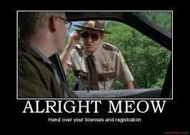 super troopers | Movie quotes | Pinterest via Relatably.com