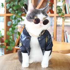 <b>Cat Litter</b> Rattan Summer <b>Cat Climbing</b> Frame <b>Pet</b> Supplies Panier ...