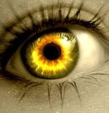 Resultado de imagen de fotos de ojos de crista