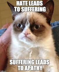 Grumpy cat don't care. - Imgflip via Relatably.com