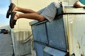how to dumpster dive   by way of bicyclehow to dumpster dive
