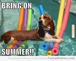 FunnyMemes.com • Funny memes - [Bring on summer] via Relatably.com