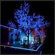 lampu hias taman: Solar powered garden decoration light 100 led 12 meter lampu