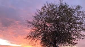 <b>Lake</b> Michigan sunrise and <b>sunset</b>: Why they're often red and orange