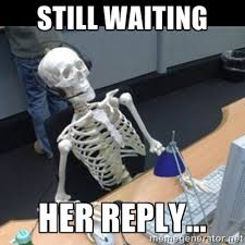 Still waiting her reply... - Skeleton computer | Meme Generator via Relatably.com