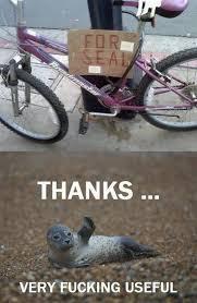 Top 20 Funny Memes via Relatably.com
