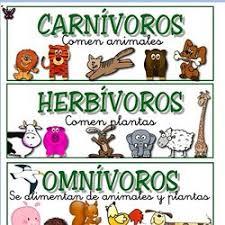 http://www.mundoprimaria.com/juegos-conocimiento-del-medio/juegos-animales/