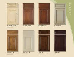 fresh kitchen cabinet door types home decor color trends contemporary nice types kitchen
