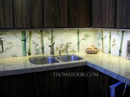 Kitchen Tile Backsplash Murals Asian Hawaiian Kitchen Backsplash Thomas Deir Honolulu Hi Artist