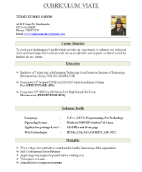 formats for resumes resume formats resume word doc template formats for resumes