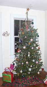 Image result for douglas fir christmas tree