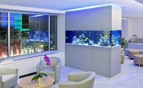 1000 images about fish tank on pinterest fish tanks home aquarium and aquarium aquarium office