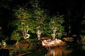 tree and pool landscape lighting backyard landscape lighting