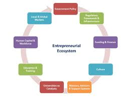 entrepreneurial ecosystems and the role of government policy what is an entrepreneurial ecosystem