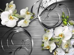 <b>Белая орхидея</b>