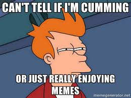 can't tell if I'm cumming or just really enjoying memes - Futurama ... via Relatably.com