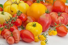 Resultado de imagen de imagenes de tomates