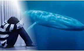 Resultado de imagem para  jogo da Baleia Azul