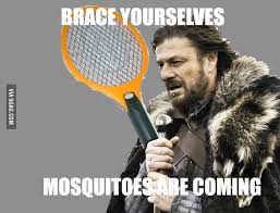 brace yourselves pictures and jokes (Imminent Ned, Brace ... via Relatably.com