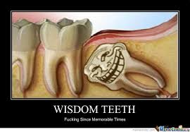 Teeth Memes. Best Collection of Funny Teeth Pictures via Relatably.com