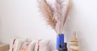 The Best <b>Pampas</b> Grass to Buy Online | The Strategist | New York ...
