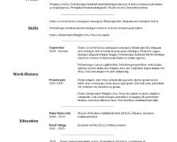 resumes hybrid resume template template sample aaaaeroincus remarkable basic resume template timeless design for excel pdf and word