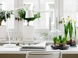 Element Of Air Purification Even A Single Potted Plant Can Make Noticeable Upgrade To Any Home Office Especially In Months When Greenery Outdoors As