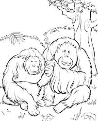 Small Picture 19 best camp images on Pinterest Animal coloring pages Coloring