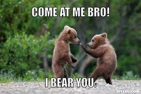 Bears Meme Generator - DIY LOL via Relatably.com