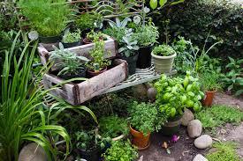 Small Picture Small Herb Garden CoriMatt Garden