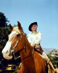 Image result for images of barbara stanwyck in the big valley