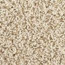 Shaw Woodbury Frieze Carpet Ft Wide at Menards