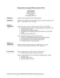 resume examples samples of resume format sample objective gallery of resume format objective