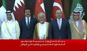 Image result for ترکیه و شورای همکاری خلیج فارس