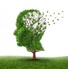Výsledek obrázku pro demence