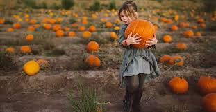 9 Impressive Health Benefits of <b>Pumpkin</b>