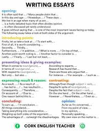 essay writing writing and learn english on pinterest