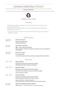junior accountant resume samples junior accountant resume