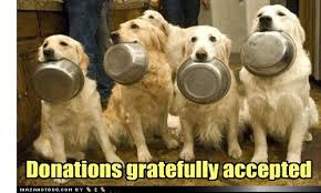 Image result for donate for pets