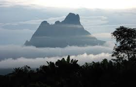 Resultado de imagem para foto pico da neblina