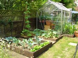 ideas kitchen garden  amazing small vegetable garden design ideas kitchen garden design nic